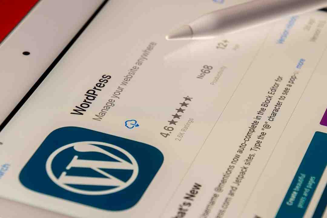 Comment se connecter à WordPress en local ?