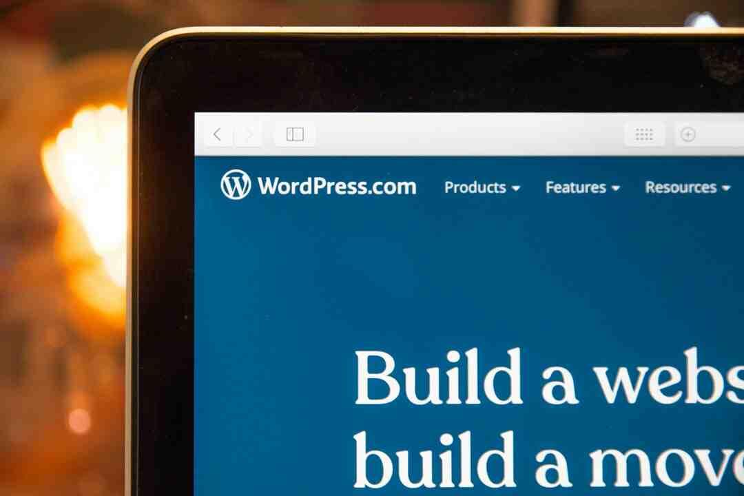 Comment utiliser wordpress pdf